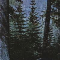 http://www.projects.bucknell.edu/packwood/zimmerman-f.tif